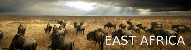 East Africa packages